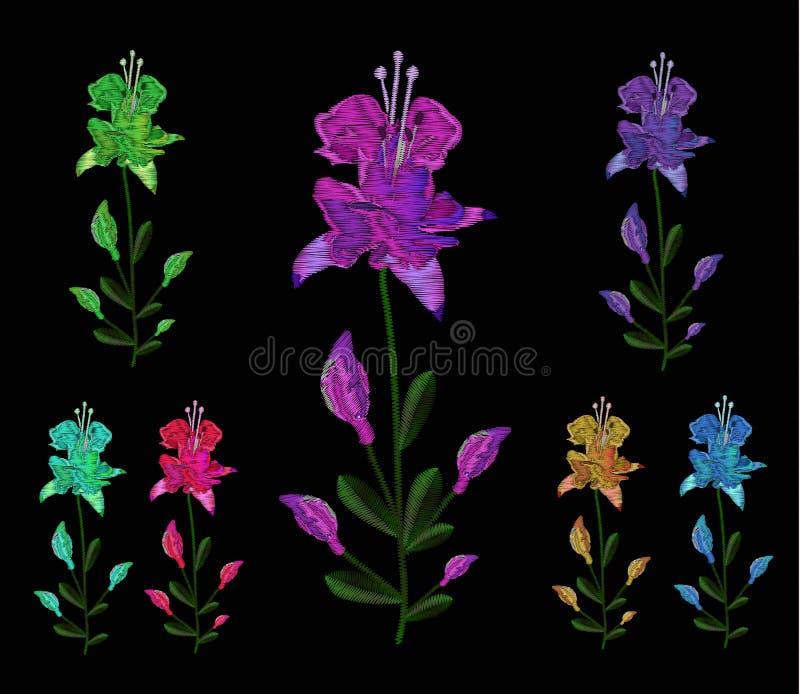 Set leluje różni kolory Broderia cajgi Broderia jest gładka Wektorowa ilustracja na czarnym tle ilustracji