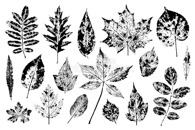 Set liści znaczki Druki liście rowan, dąb, klon, lipowy, wiąz, bonkreta, jabłko i inny, zdjęcie stock