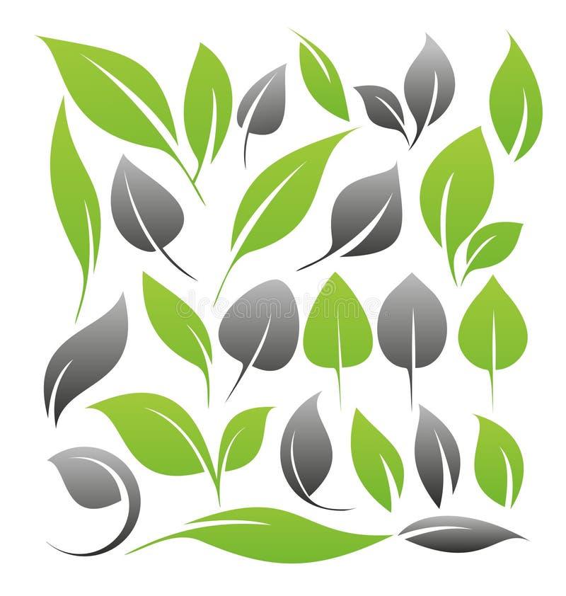 Set liścia projekta elementy ilustracja wektor