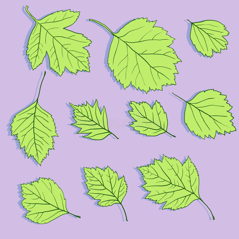Download Set Of Linear Drawing Leaves Stock Image - Image: 37818373
