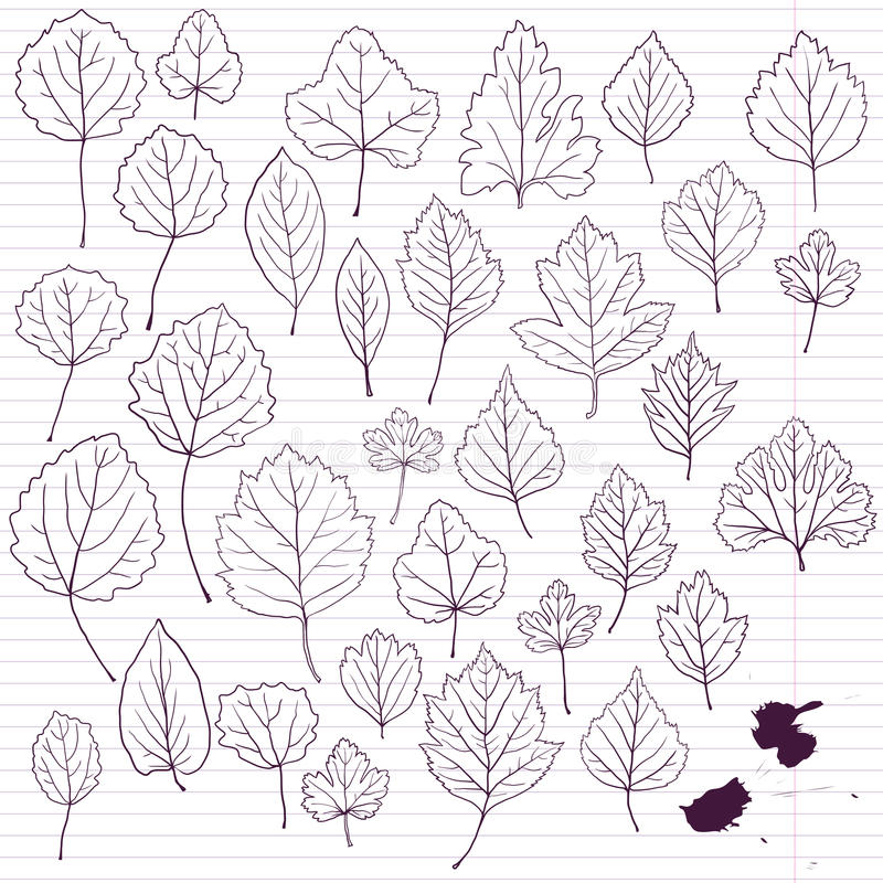 Download Set Of Linear Drawing Leaves At Lined Paper Stock Image - Image: 38444385