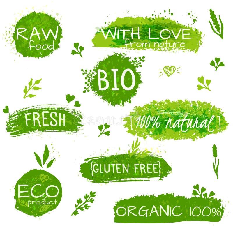 Set logowie, znaczki, odznaki, etykietki dla naturalnych eco produktów, gospodarstwa rolne, organicznie Kwieciści elementy i grun ilustracja wektor