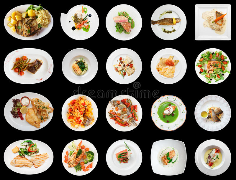Set of main fish courses on black. Background royalty free stock images