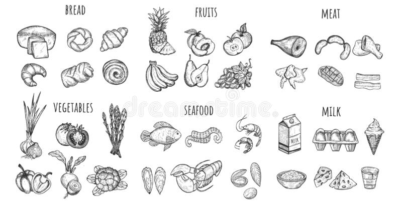 Set of the main food. Big set of the main food groups diet nutrition icons. Bread, fruits, meat, vegetables, seafood, milk. Healthy meal planning, restaurant royalty free illustration