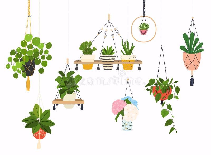 Set makrama wieszaki dla rośliien r w garnkach Flowerpot odizolowywający protestuje, houseplant kwiatu garnka kolekcja ilustracja wektor
