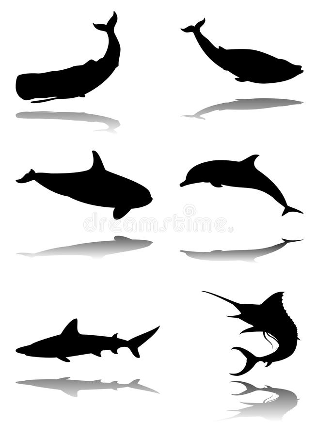 Download Set of marine animals stock vector. Illustration of ocean - 11586531