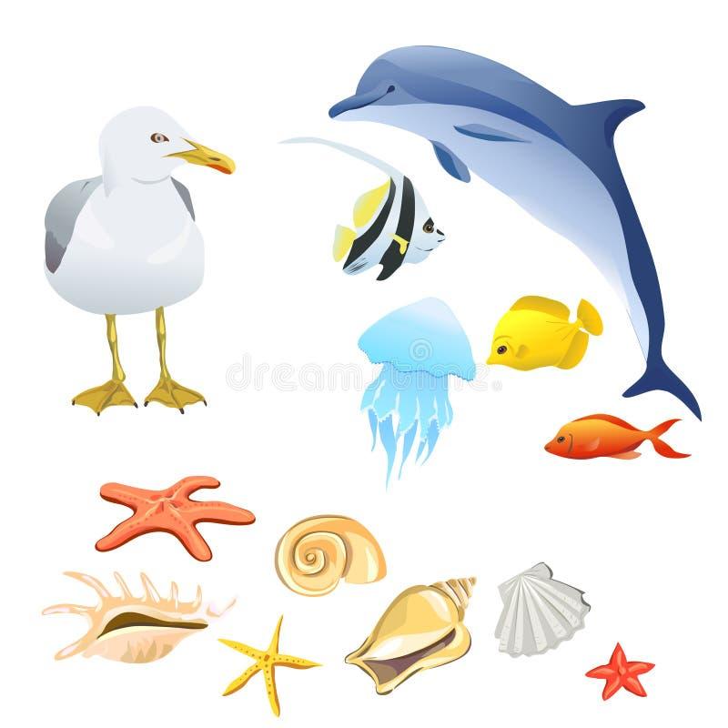 Set of marine fauna isolated. Vector illustration vector illustration