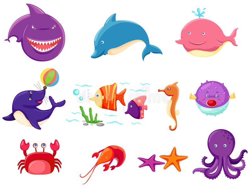 Set of marine life royalty free stock photos