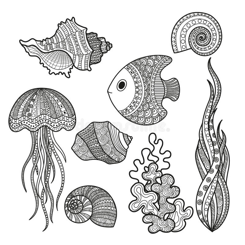 Set of marine life fish. Vector illustration set of marine life fish, shell snail algae and corral coloring for adults. Underwater life of a coloring book, page stock illustration