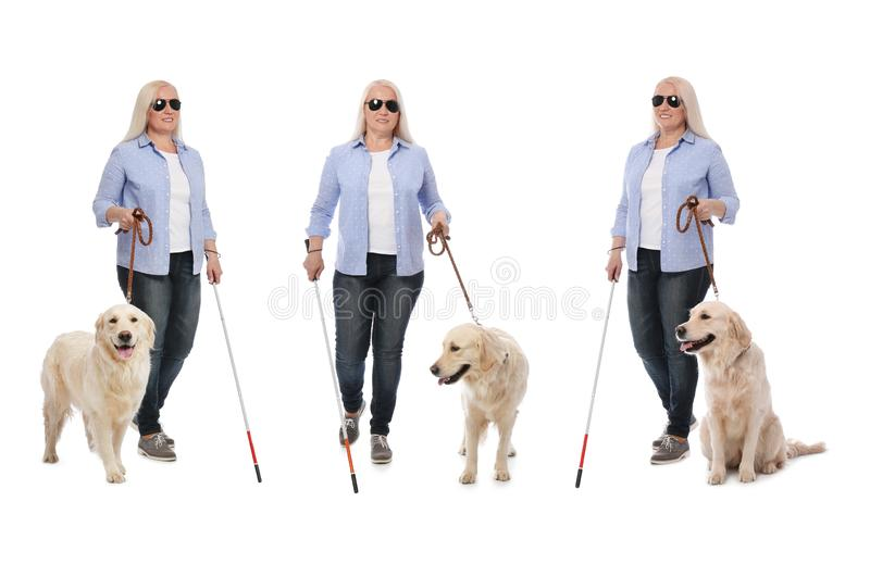 Set of mature blind woman with long cane and dog on white royalty free stock image