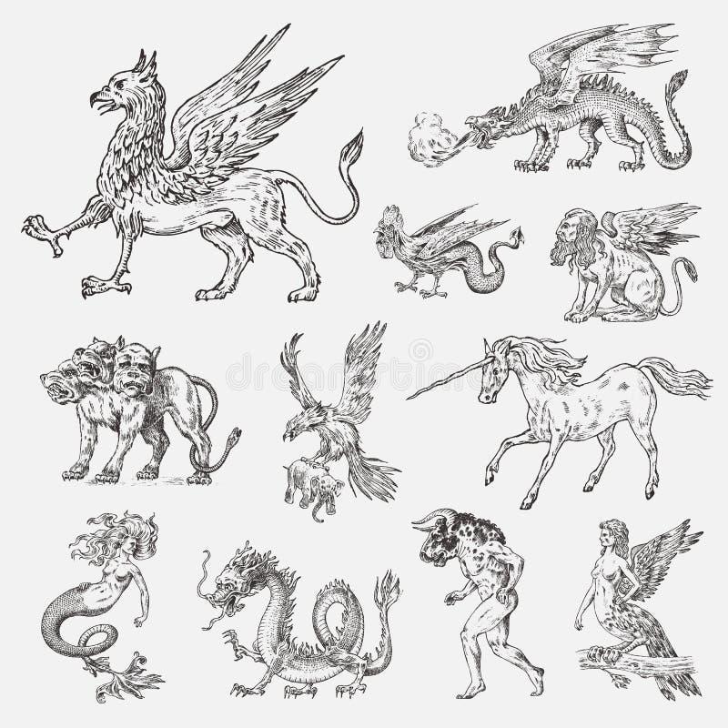 Set Mitologiczni zwierzęta Syrenka minotaura jednorożec smoka Cerberus Harpy sfinksa Chińskiego gryfa Mityczny Bazyliszkowy Roc royalty ilustracja