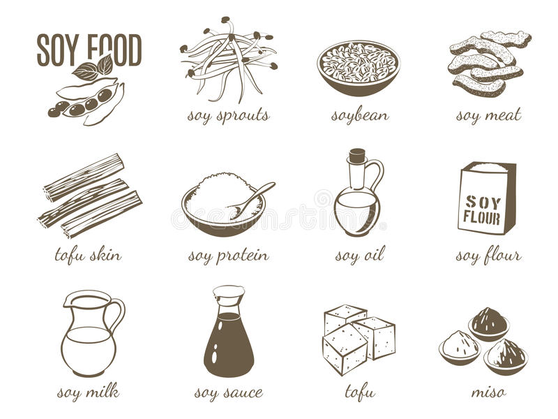 Set of monochrome cartoon soy food illustrations - soy milk, soy sauce, soy meat, tofu, miso and so on. Vector illustration. On transparent background, eps 10 vector illustration