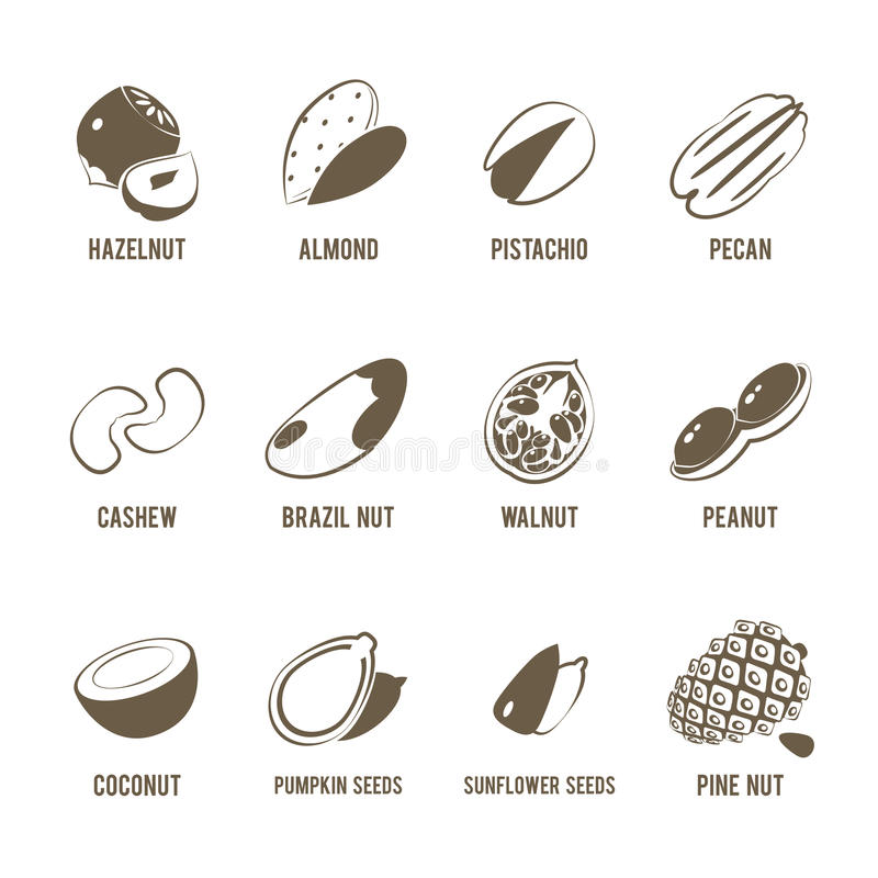 Set of monochrome, lineart food icons: nuts. royalty free illustration