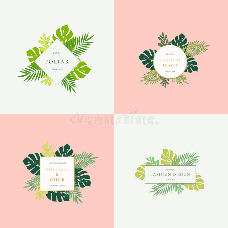 Set of Monstera Tropical Leaves Fashion Signs or Logo Templates. Abstract Foliage with Golden Borders and Classy stock illustration
