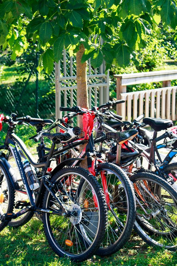 Set of mountain bikes in the park waiting for departure of the ride.  Biking sport outdoor activity. royalty free stock image