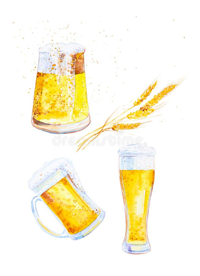 Set of mugs filled with beer with foam and ears of wheat with crumbs. Watercolor illustration isolated on white background royalty free illustration
