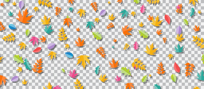 Set of multi-colored autumn leaves on transparent background. Vector Illustration. royalty free illustration