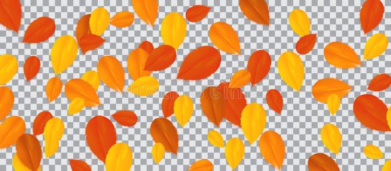 Set of multi-colored autumn leaves on transparent background. Vector Illustration. stock illustration