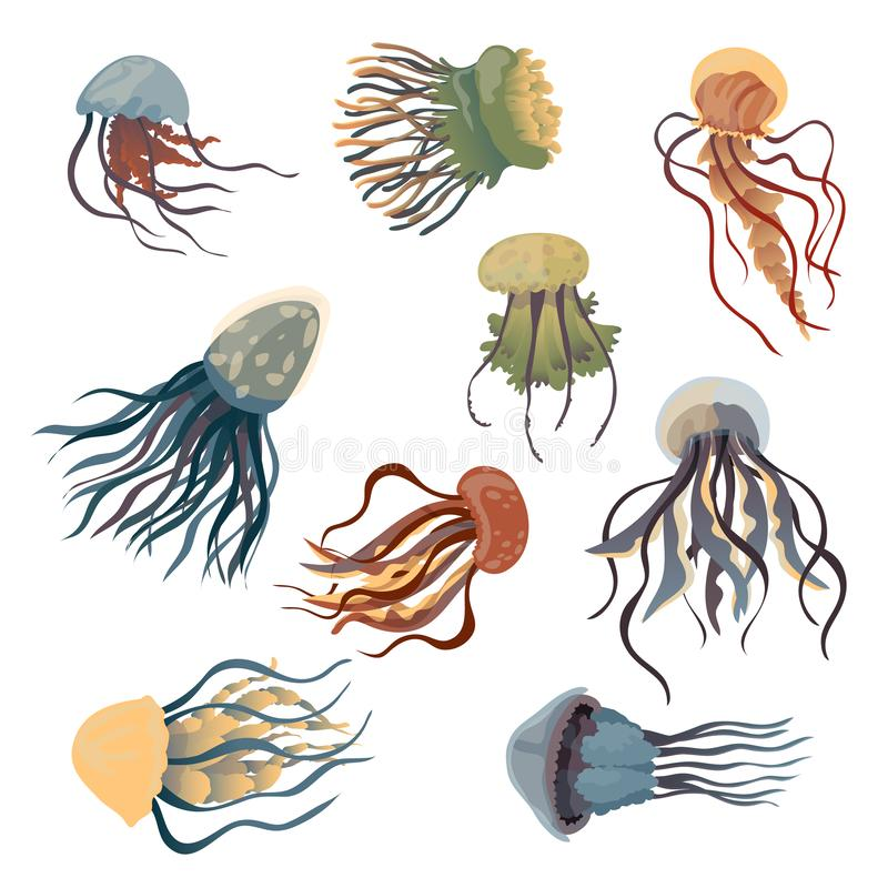 Set of multi-colored jellyfish. Vector illustration on white background. stock illustration