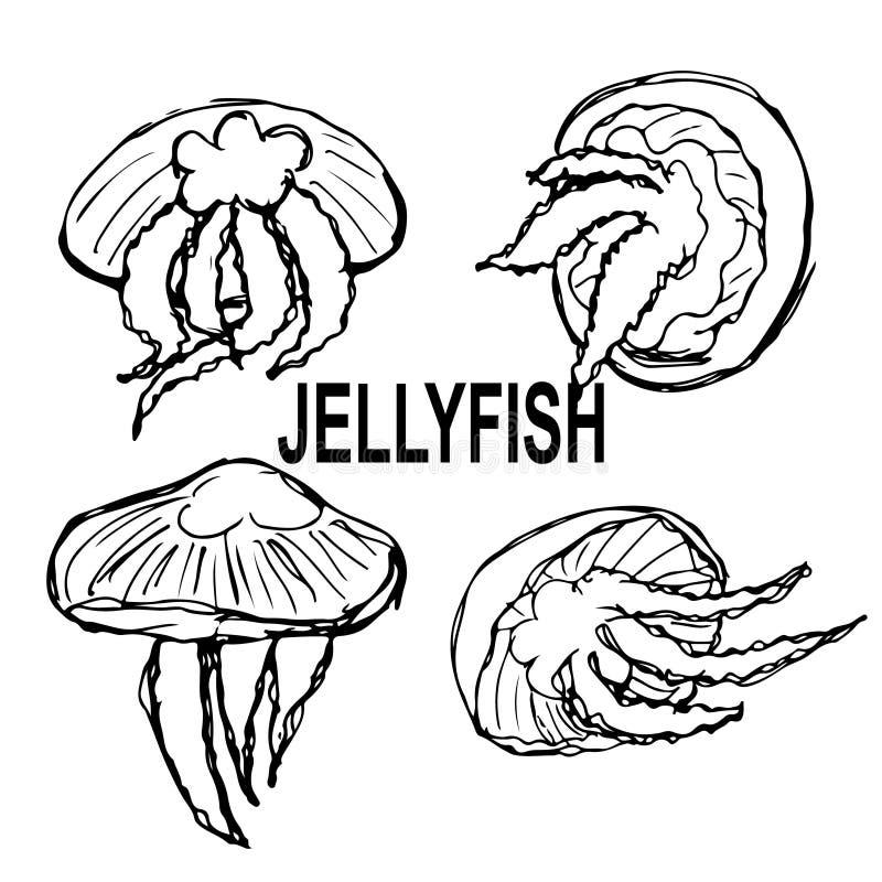 Set nakreślenia jellyfish w różnych pozycjach i kąty z czarnymi liniami royalty ilustracja