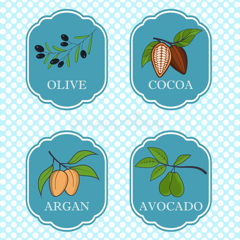 Set of natural ingredients and oils for beauty and cosmetics - packaging design templates and emblems - olive, avocado royalty free illustration