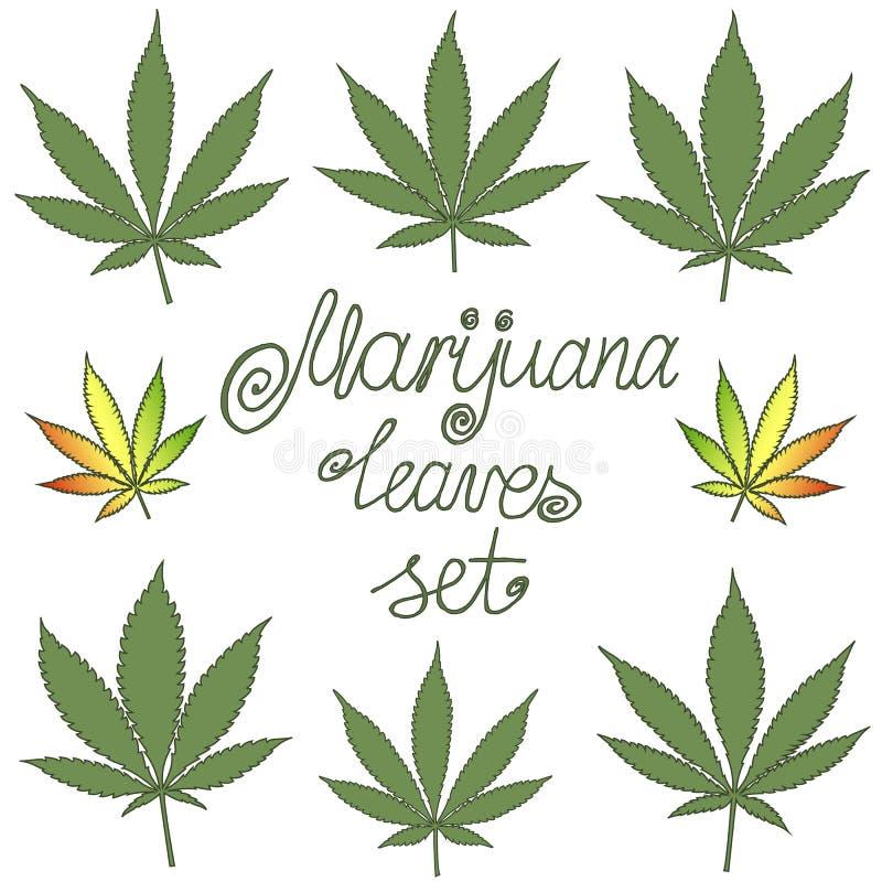 Set naturalni marihuana liście royalty ilustracja