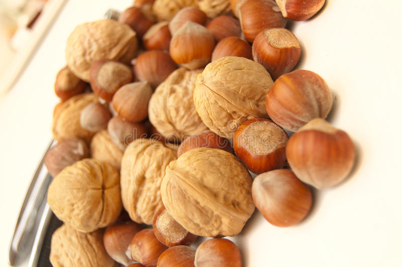 Set of nuts in kitchen royalty free stock images