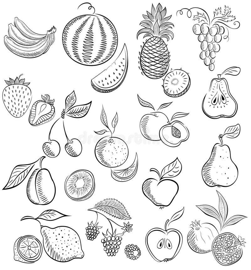 Set od owoc i jagod Rysunkowy nakreślenie royalty ilustracja