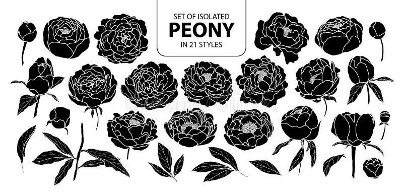 Set odosobniona sylwetki peonia w 21 stylu Śliczna ręka rysująca kwiat wektorowa ilustracja w białym konturze i czerń heblujemy ilustracja wektor