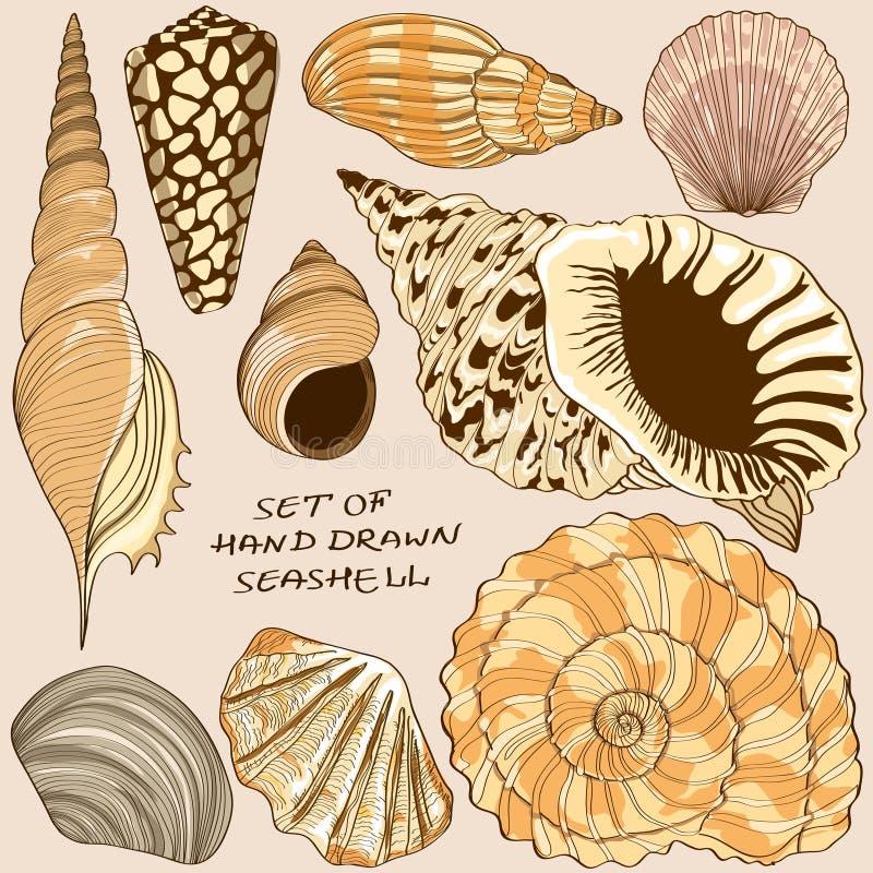 Set odosobnione seashell ikony ilustracji