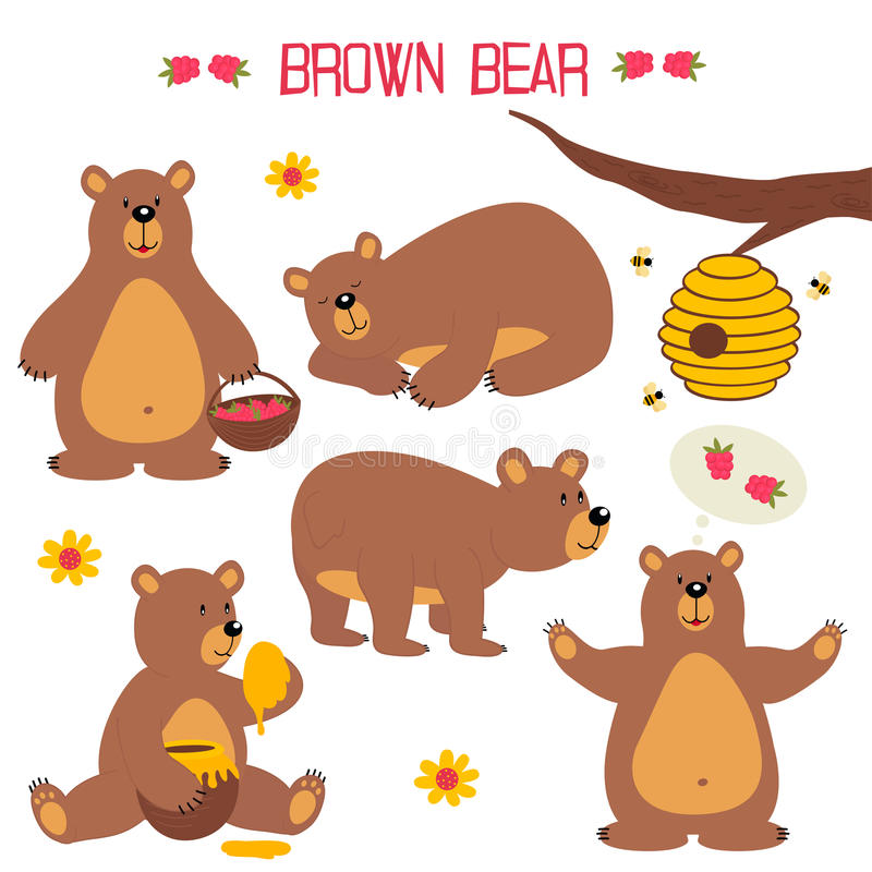 Set odosobniony brown niedźwiedź ilustracja wektor