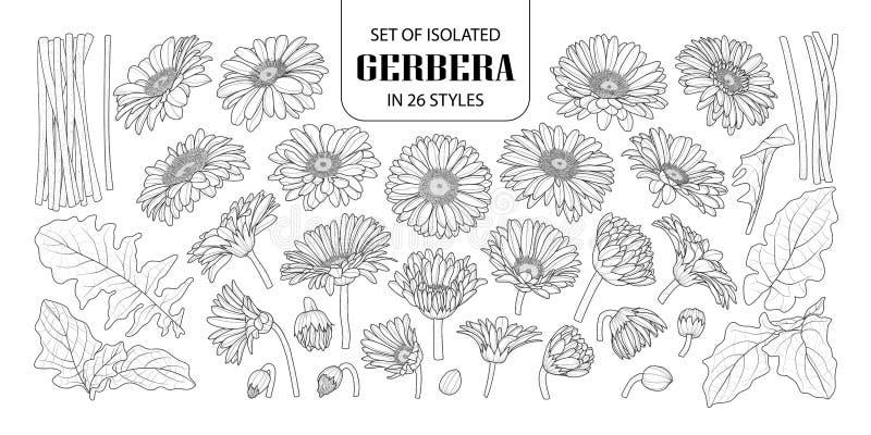 Set odosobniony gerbera w 26 stylach ilustracja wektor