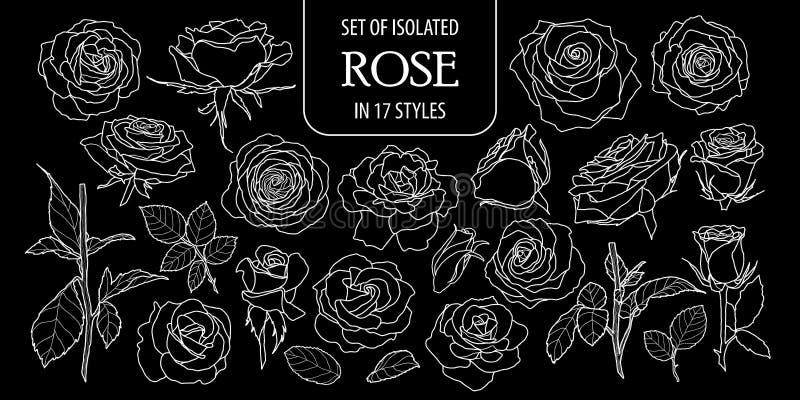 Set odosobniony wzrastał w 17 stylach Śliczna ręka rysujący kwiatu wektorowy ilustracyjny tylko biały kontur ilustracji
