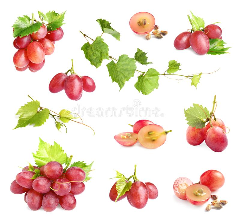 Free Set Of Fresh Ripe Grapes And Leaves On White Royalty Free Stock Photos - 161240828