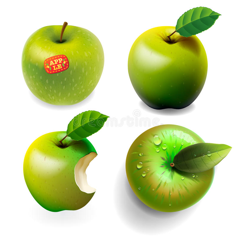 Free Set Of Green Ripe Apples, Four Various View Royalty Free Stock Photography - 34829817