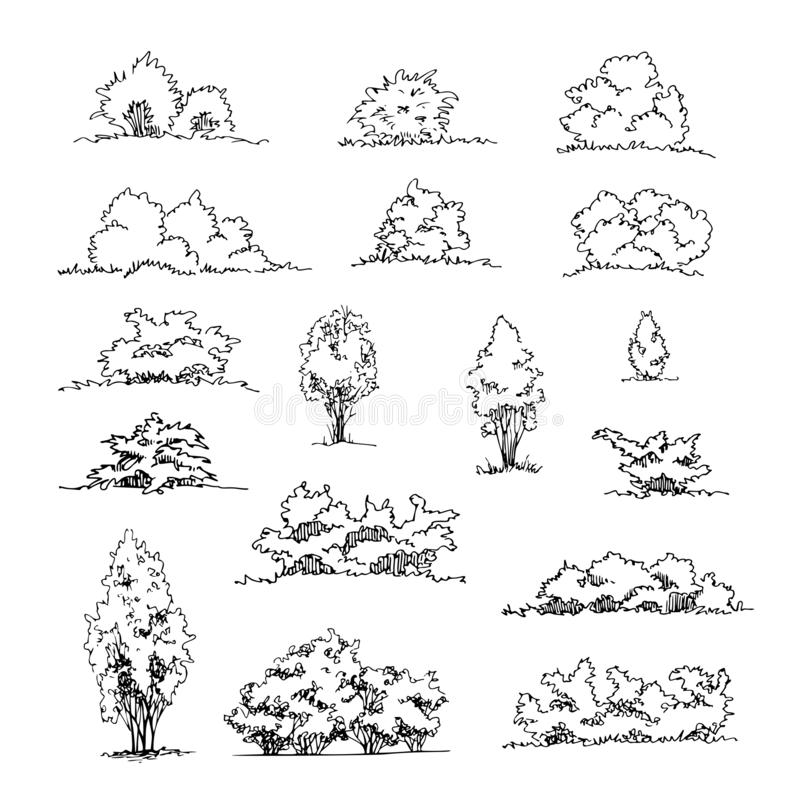 Free Set Of Hand Drawn Architect Shrubs, Vector Sketch, Architectural Illustration Royalty Free Stock Photos - 136333828