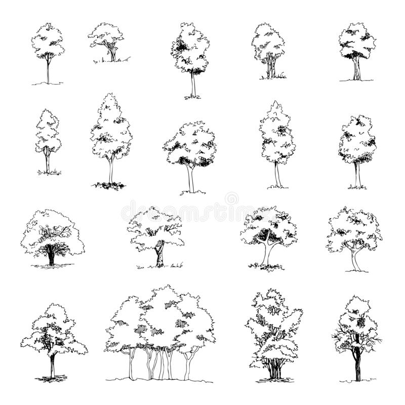 Free Set Of Hand Drawn Architect Trees, Vector Sketch, Architectural Illustration Royalty Free Stock Photography - 136333807