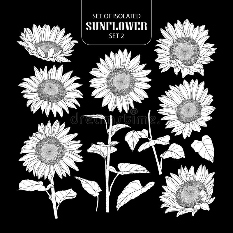 Free Set Of Isolated White Silhouette Sunflower Set 2. Stock Images - 115520014