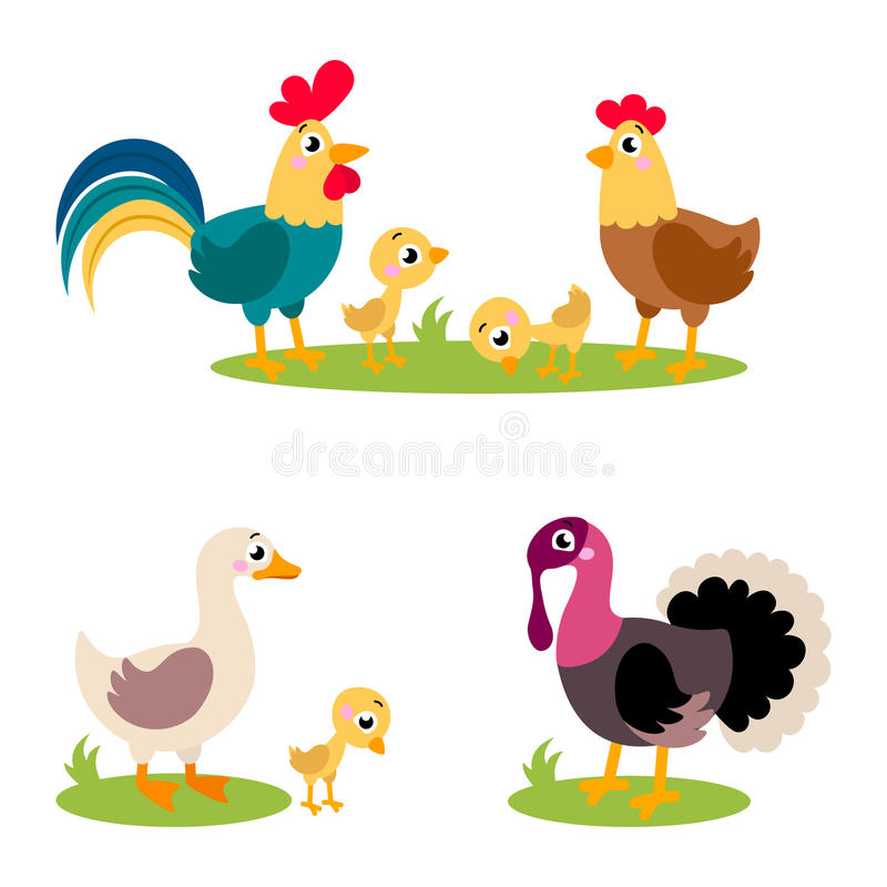 Free Set Of Popular Colorful Vector Farm Birds Royalty Free Stock Image - 85623786