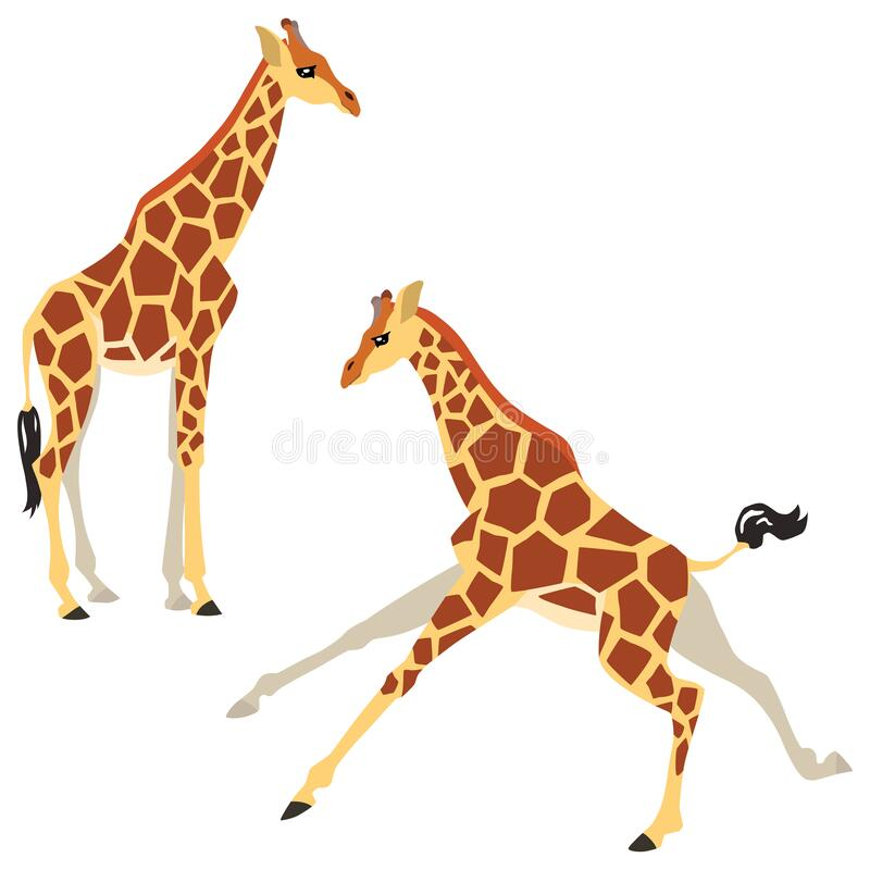 Free Set Of Two Giraffes Stock Images - 180075504