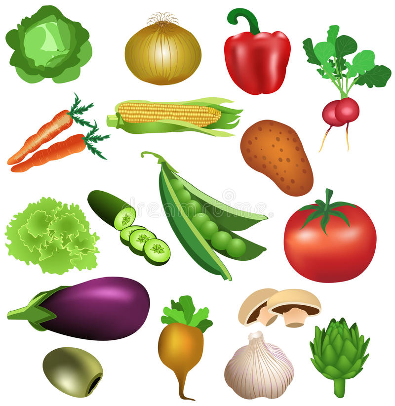 Free Set Of Vegetables Royalty Free Stock Photos - 32487618