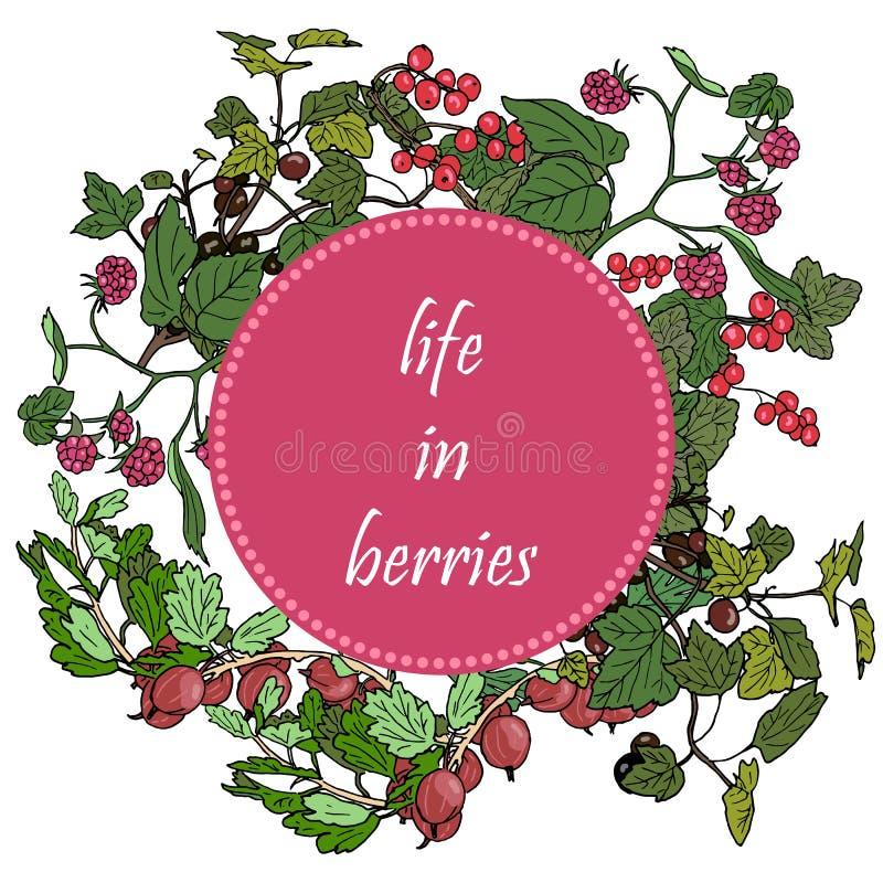 Set ogrodowe jagody i zieleń kapuje w okrąg odznace, czernica, malinka, czerwony rodzynek, agrest royalty ilustracja