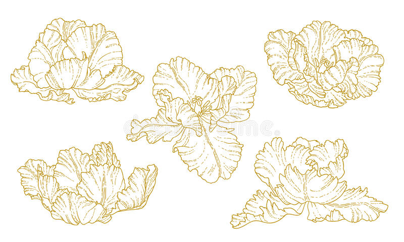 Download Set Of One-colored Outlined Tulips Stock Vector - Illustration: 32724100