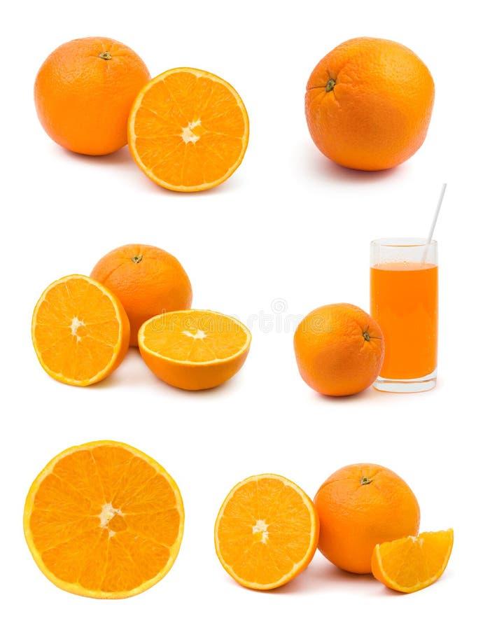 Set orange Früchte lizenzfreies stockbild