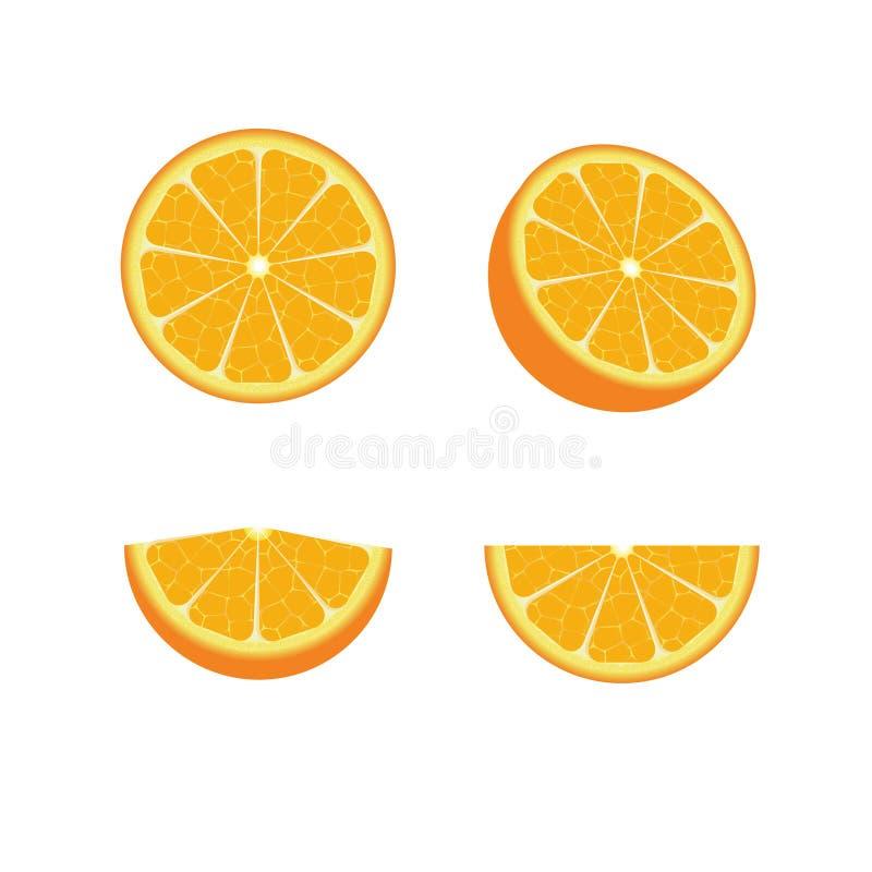 Set of oranges royalty free illustration