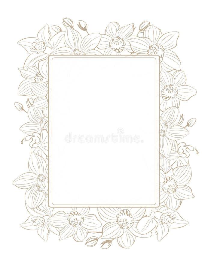 Set orchid stock illustration
