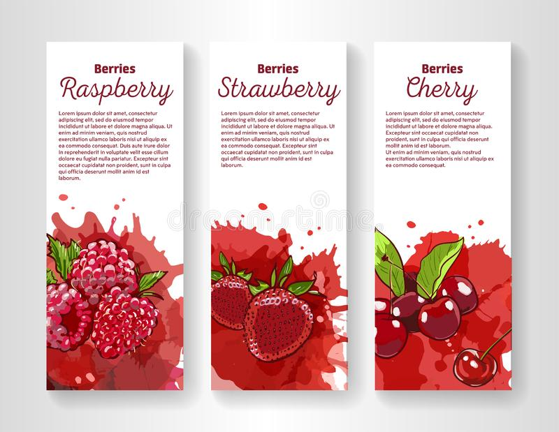 Set of organic eco berries vertical banners. Hand drawn illustration in sketch style. Cherry, strawberry and raspberry. On colorful splashes on white background stock illustration