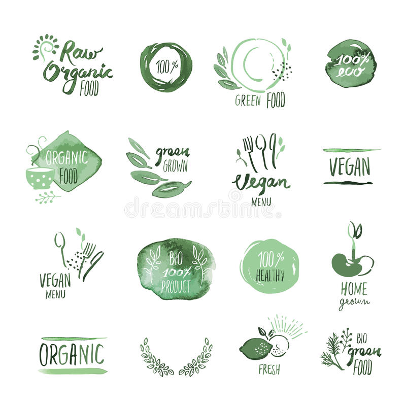Set of organic food hand drawn watercolor stickers and elements stock illustration
