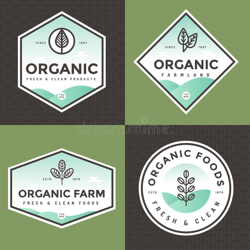 Set of organic food logo, badges, banners, emblem with pattern. Package design. Clean food. Natural food, healthy food. stock illustration