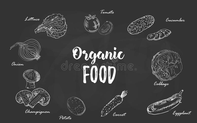 Set of organic food vegetables hand drawn chalk sketch on a blackboard. Vector illustration for retro vintage style menu. Design, flyer, poster, package royalty free illustration
